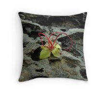 where no-one looks Throw Pillow