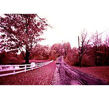 Infrared landscape. Easton, Connecticut, fall 1973 Photographic Print