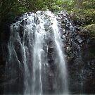 Elinjaa Falls by Chris Cohen