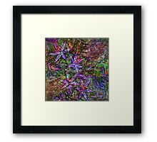 Summer Wine 14 Framed Print