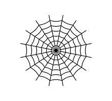 Spider Web - Black Photographic Print