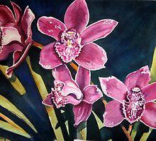 Orchids by Gaby Schrott