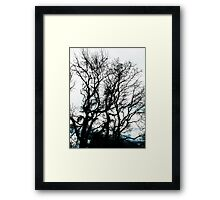 leave me at the tree Framed Print