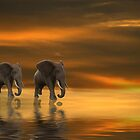 Follow Me Two by Angi Baker