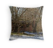 Abandoned Guest House Throw Pillow