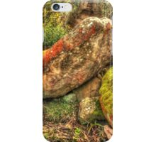 A Rock Group ... But Not The Rolling Stones iPhone Case/Skin