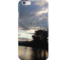 Hawk over the Colorado iPhone Case/Skin