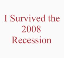 I SURVIVED THE 2008 RECESSION by Barbara Sparhawk