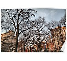 Behind The Trees From Union Square Poster