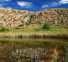 Pasture Lake, Bottomless Lakes State Park, NM by Jeff Chavez