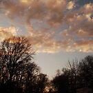 sky fell over me by Lauren Lynch