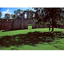 Ruins, Fountains Abbey, Midsummer Photographic Print