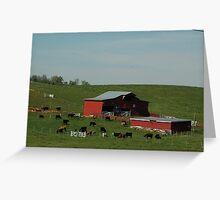 Cattle Farm Greeting Card
