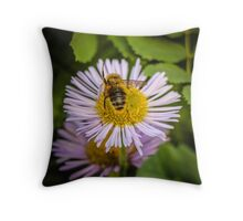 Successful Bee is Successful Throw Pillow