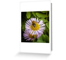 Successful Bee is Successful Greeting Card