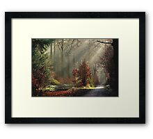 The day before the snow came Framed Print