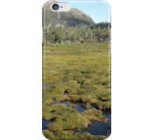 Mount Rogoona from narrow open valley iPhone Case/Skin