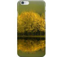3704 iPhone Case/Skin