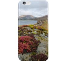 Glen Brittle iPhone Case/Skin