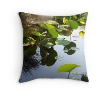 Reflections on a cloudless day Throw Pillow