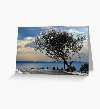 crooked tree Greeting Card