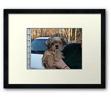 NC ball of fur Framed Print