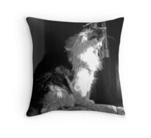 Bella in Light and Shadow Throw Pillow