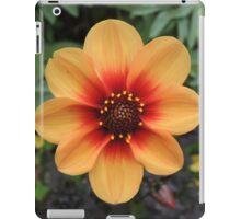 Sunshine In The Soil iPad Case/Skin