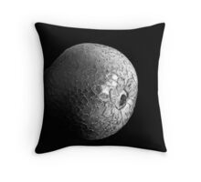 Crackled Pear Throw Pillow