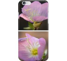 Dancing with the wind... Pink Evening Primrose (Oenothera speciosa) Free State, South Africa iPhone Case/Skin