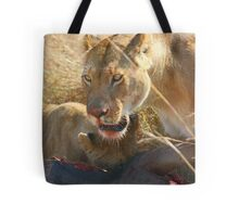 Lions at a Wilderbeest Kill, Maasai Mara, Kenya  Tote Bag