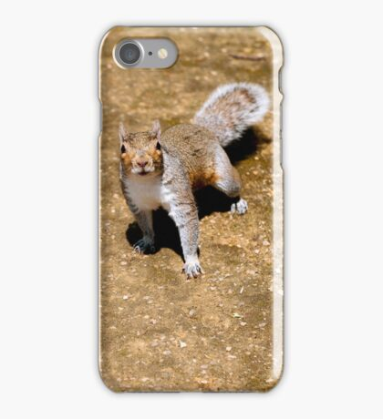 squirrel #48 iPhone Case/Skin