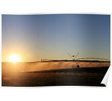 Early Morning Irrigation... Poster
