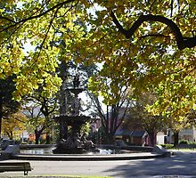 photoj Tasmania Launceston City Park by photoj