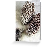 Pine cones in Snow Greeting Card