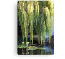 Golden Willow Canvas Print