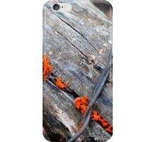 between the cracks iPhone Case/Skin