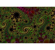 """""""MATHEMATICAL FANTASY  -  NUMBER TWO Photographic Print"""