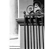 Randolph Hall Iron Gate Photographic Print