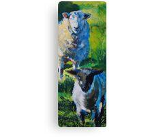 Sheep and Lamb Canvas Print