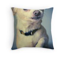 Chihuahua Acting Macho Throw Pillow