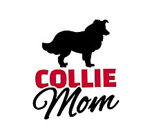 Collie Mom Photographic Print