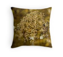 Yesterdays Lace Throw Pillow