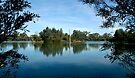Laratinga Wetlands Mount Barker by LeeoPhotography