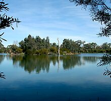 Laratinga Wetlands Mount Barker by LeeoPhotography