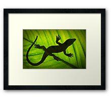 Flat Out Like a Lizard . . . . . . . Framed Print
