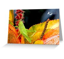 Green Grasshopper Greeting Card
