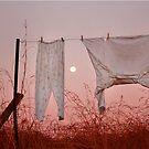 African washline by ingridewhere