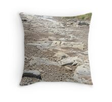 Dry stream 1 Throw Pillow