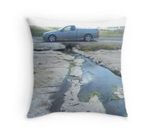 Almost dry stream Throw Pillow